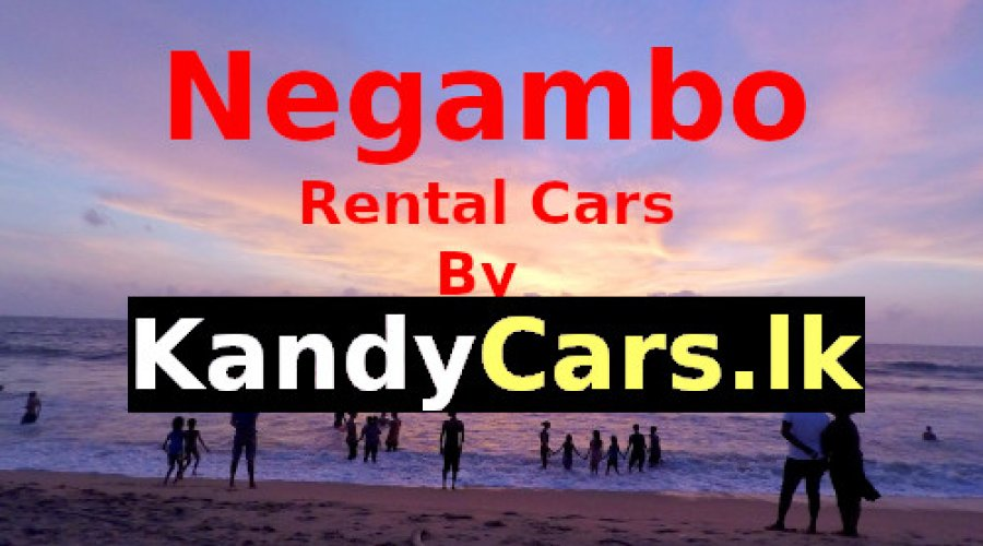 Negambo Sri Lanka